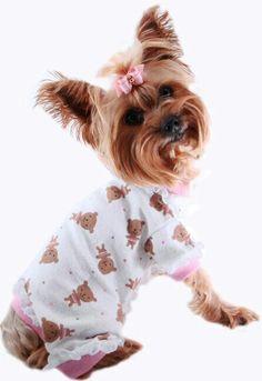 Yorkie , Pink Pajamas, ❤