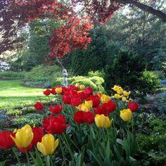 (51) Glocalnet Webmail :: Garden Photo: A Garden Full of Favorites