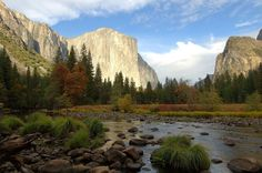 Classic fall photo of Yosemite Valley, with Merced River in foreground Photo: U.S. Forest Service, Special To The Chronicle