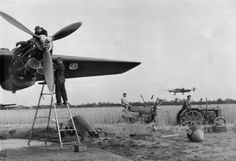 AUG 25 1943 A letter from a Bomber Command Group Captain - See more at: http://ww2today.com/25th-august-1943-a-letter-from-a-bomber-command-group-captain# Farmers gather in the wheat, undisturbed by the presence of these Halifaxes of an unidentified No 4 Group squadron in Yorkshire, August 1943.