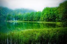 Artvin Borçka'da bulunan Karagöl ve harika doğası.