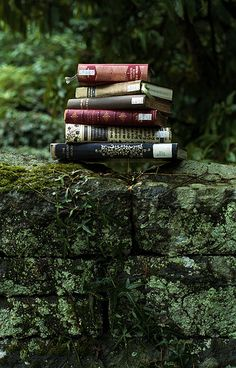 Reading books in the woods is a favorite activity in Book Heaven.