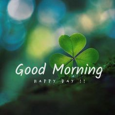 Good Morning Friends Images, Latest Good Morning Images, Good Morning Beautiful Pictures, Good Morning Picture, Good Morning Messages, Morning Pictures, Good Morning Wishes, Good Morning Handsome, Good Morning Funny