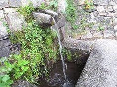 fontaine gif Corse Corsica
