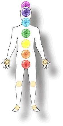 """Spiritueelnetwerk.nl - Alles over chakra's Chakra's zijn centra van geestelijke energie in het menselijk lichaam. De zeven belangrijkste chakra's lopen langs je wervelkolom tot aan je kruin. De chakra's (Sanskriet voor """"wiel"""") zijn te vergelijken met een soort energiebronnen."""