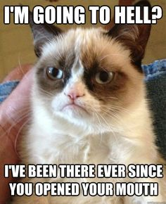 """""""Grumpy Cat"""" - I'm going to Hell?"""