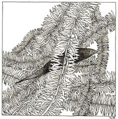 origianl pen and ink drawing by natsuo ikegami