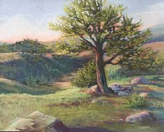 A Warm Evening Settles by Tammy Cox Pastel ~ 9 x 12