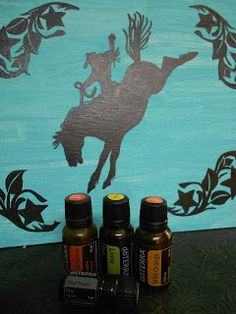 MOTIVATION BLEND:  Frankincense Essential Oil, Black Pepper Essential Oil, Lime Essential Oil, and Wild Orange Essential Oil. Blend 1 drop of each DoTerra Essential Oil and APPLY to the backs of the knees. (I diffused mine & it was FABULOUS!)  www.onedoterracommunity.com   https://www.facebook.com/#!/OneDoterraCommunity
