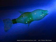 De botellas de plástico, a flora y fauna marina. Medusas, peces, corales, plantas y flores soñadas Sueños marinos con botellas de plástico recicladas https://youtu.be/gvblSkEoUUA https://youtu.be/GlU1k1mlYoU