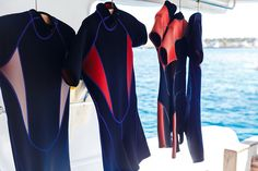 Buying Your Own Scuba Gear: Pros, Cons and Practical Advice by Sarah Wormald on… Scuba Wetsuit, Diving Wetsuits, Scuba Diving Equipment, Scuba Diving Gear, Snorkeling, Stay Warm, Gears, Cover Up, Advice