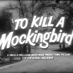 I am writing an essay on how to kill a mocking bird influenced me.?