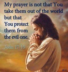 My prayer is not that You take them out of the world but that You protect them from the evil one. John 17:15