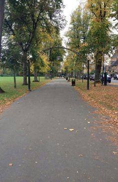Autumn photography - leamington