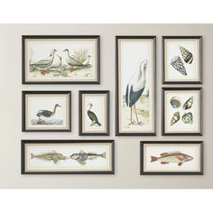8-Piece Seashore Collage Framed Print Set