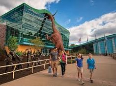Image result for best museums