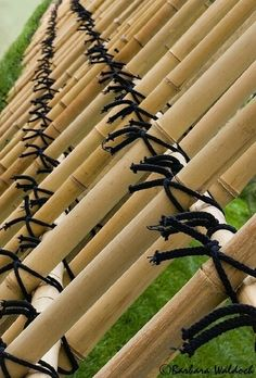 Bamboo fence, black twine detail.  http://images.betterphoto.com/0739/0709270022361bamboo_fence1.jpg
