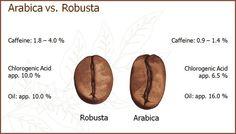 arabica or robusta - Buscar con Google Arabica Robusta, Types Of Coffee Beans, Coffee Photos, Coffee Type, Coffee Roasting, Coffee Break, Barista, Espresso, Latte