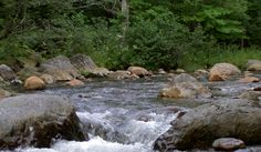 Supporting Grassroots Efforts | Maine Rivers