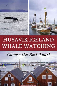 Planning some Iceland whale watching for your trip to Iceland? Husavik is Iceland's whale watching capital and the best place to see whales. Here's my tour review and how to choose the best whale watching tour in Iceland! Europe Train Travel, Europe Travel Tips, Spain Travel, Travel Guides, Travel Destinations, European Travel, Whale Watching Iceland, Whale Watching Tours, Iceland Travel