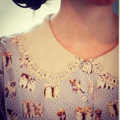 Kittens...and peter pan collars....yes please!