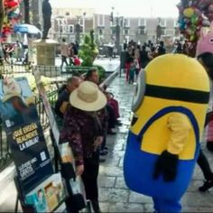 Something for everyone even the minions know they need spiritual food!