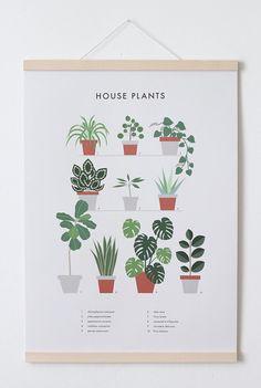 Plakat Druck Zimmerpflanzen A2 von FineFineStuff auf Etsy
