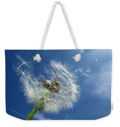 Dandelion / Blowball Weekender Tote Bag: Fluffy white flower and blue sky. Our weekend tote bags are chic and perfect for a day out on the town or a weekend getaway - and they are great for your beach activities! The tote is crafted with soft, spun poly-poplin fabric and features double-stitched seams for added durability. The 1'' thick cotton handles are perfect for carrying the bag by hand or over your shoulder. This is a must-have for the summer. Matthias Hauser hauserfoto.com