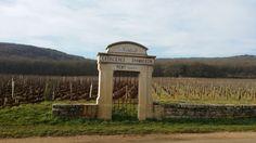Peu avant Noël, j'ai eu le plaisir de découvrir Dijon et ses alentours lors d'un petit séjour dans la capitale des Ducs de Bourgogne. Grande fan de ma ville de Bordeaux, je dois dire que Dijon est une des rares villes française qui soit, à mon sens, aussi...