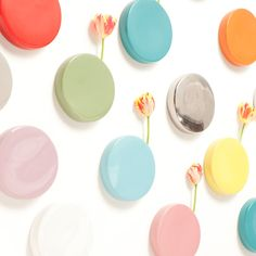 {Chive Dots} by Chive - wall-mountable circle planters - love these!!