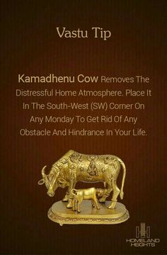 Kamadhenu Cow has heavenly powers, nd is effective in attracting profits from land and agricultural technology. Feng Shui And Vastu, Feng Shui Tips, Mandir Design, Pooja Room Door Design, Vastu Shastra, Puja Room, Indian Home Decor, My Collection, Jewelry Collection