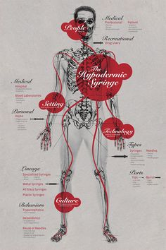 """Sarasota based designer Mariana Silva created this chart, """"highlighting information about the hypodermic syringe, it's culture, technology, people and setting. Below, a timeline based on the same visual system, showcasing the different evolutions of the syringe as well as its place in history."""" on Street Anatomy"""