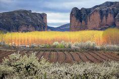 Valle de Iregua en primavera.