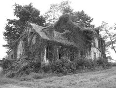 Image result for Abandoned home old saybrook ct