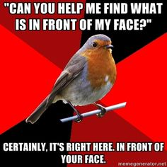 Retail Robin - Can you help me find what is in front of my face? Certainly, its right here. in front of your face.