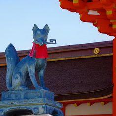 Лисы из Фусими-Инари Тайся #прогулки #город #Киото #ФусимиИнари #лиса #лисы #местосилы  #местасилы
