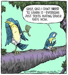Texting...it's for the birds. Speed Bump for 9/4/2014 | Speed Bump | Comics | ArcaMax Publishing