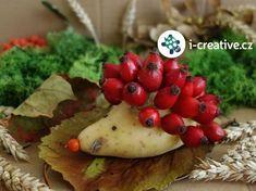 podzimní tvoření pro děti Autumn Crafts, Nature Crafts, Diy And Crafts, Crafts For Kids, Arts And Crafts, Fall Diy, Preschool Activities, Kids And Parenting, Art For Kids