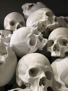 Skull Anatomy, Skeleton Anatomy, Skull Head, Skull Art, Anatomy Sculpture, Skull Sleeve Tattoos, Skull Reference, Skull Sketch, Background Drawing