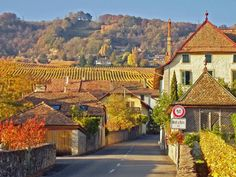 Mont-sur-Rolle, Switzerland. Other home sweet home.