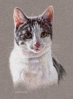 Cat Portrait 2 by EsthervanHulsen.deviantart.com on @deviantART