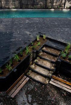 alfredo-comandari-design-aguas-claras-house-located-midst-eucalyptus-forestp-06