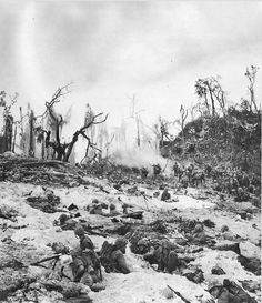 The 1st Marine Division on Peleliu, 1945