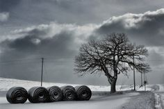 Photographer: Trevor Baird  Title: Darkness Comes Rolling in on the Winter Wind  Location: Wisconsin