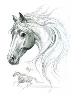 Art sketches pencil horse 65 Ideas for 2019 Horse Pencil Drawing, Horse Drawings, Pencil Art Drawings, Art Drawings Sketches, Animal Drawings, Drawing Animals, Horse Sketch, Animal Sketches, Sketches Of Horses