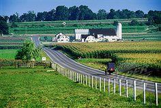 Amish Buggy and Farm, Lancaster County, Pennsylvania,