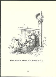 """""""And if he rolls about, it's probably colic""""  -- Thelwell's Original Vintage Pony Horse Mount Cartoon Print 1964 Comical"""
