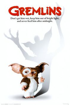 Don't get him wet, keep him out of bright light, and never feed him after midnight.
