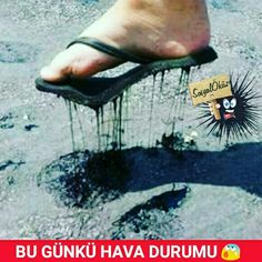 Ay Gitti Terlik #sosyalöküz #öküz #komik #çok #çokkomik #resim #resimler #sıcak #esmiyor #çoksıcak #yaz #gölge #serin #klima #beğen #takip #sıcaklar
