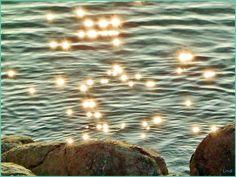 Sun GUEST...:)